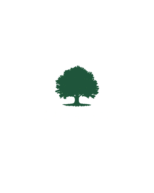 Green Tree Finance